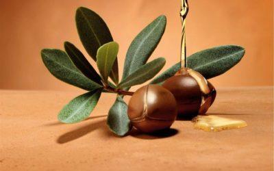 Il prezioso olio di argan per la bellezza